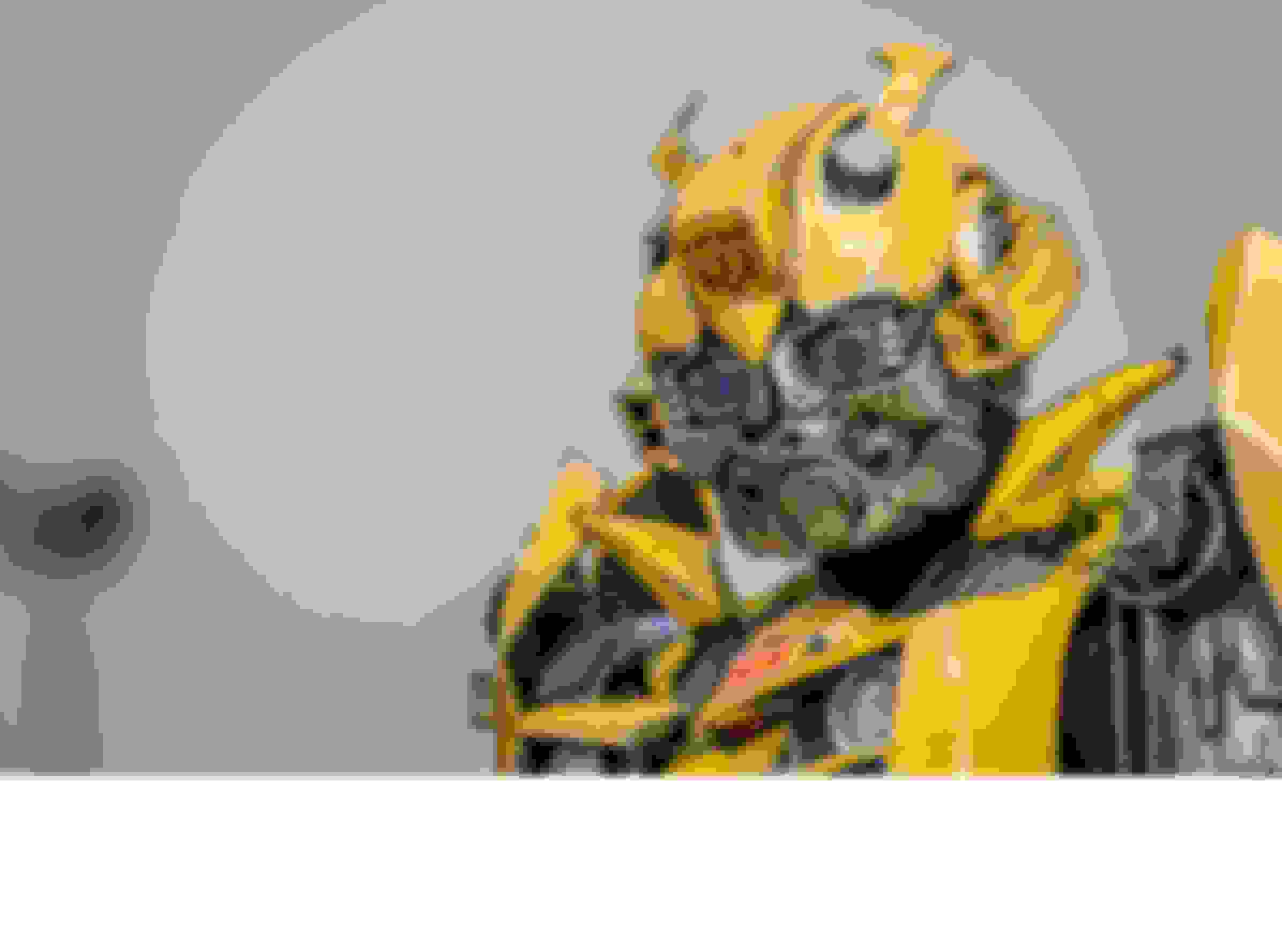 Bumblebee Transformer Robot
