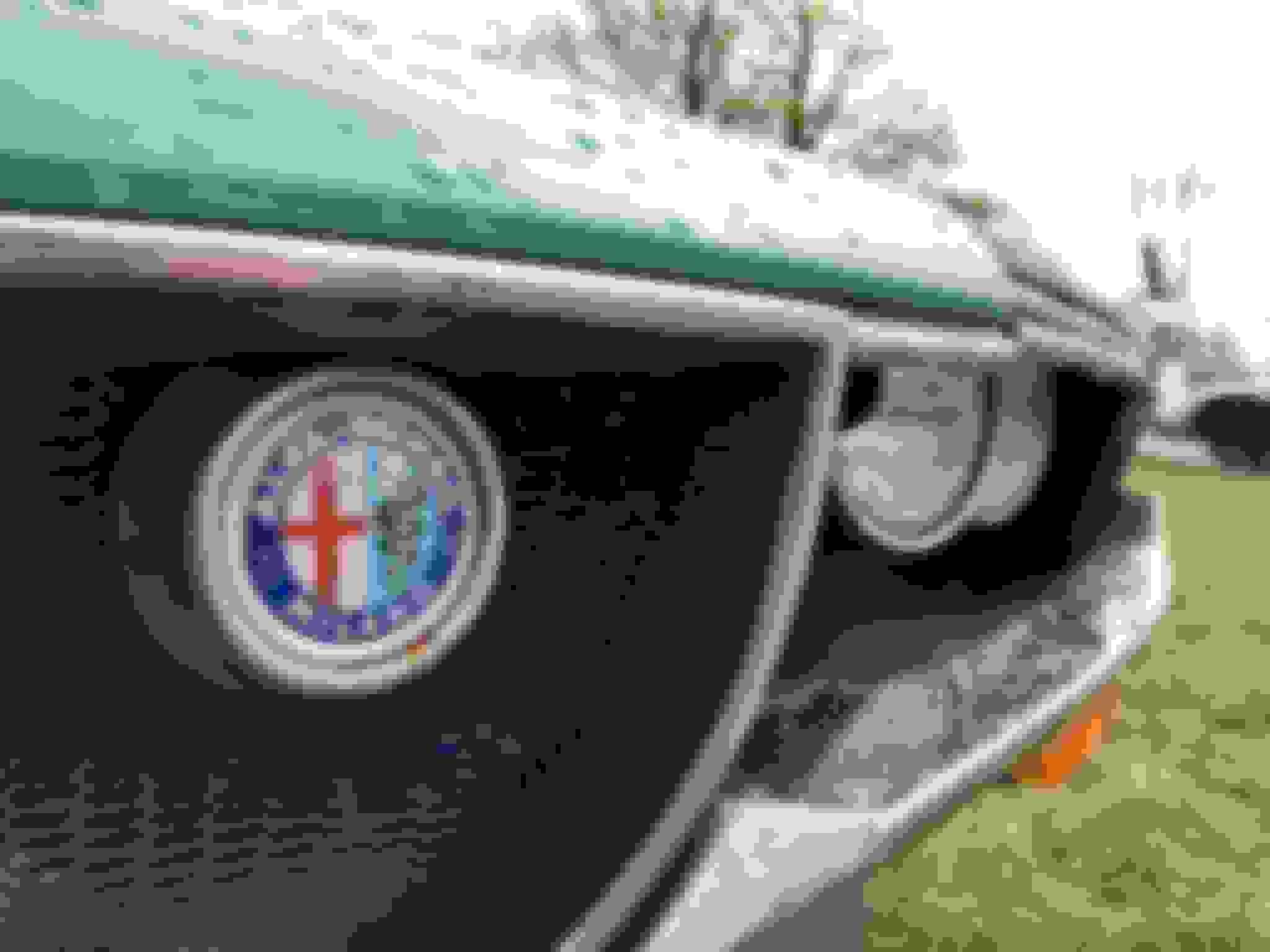 Sporting Fiesta Display