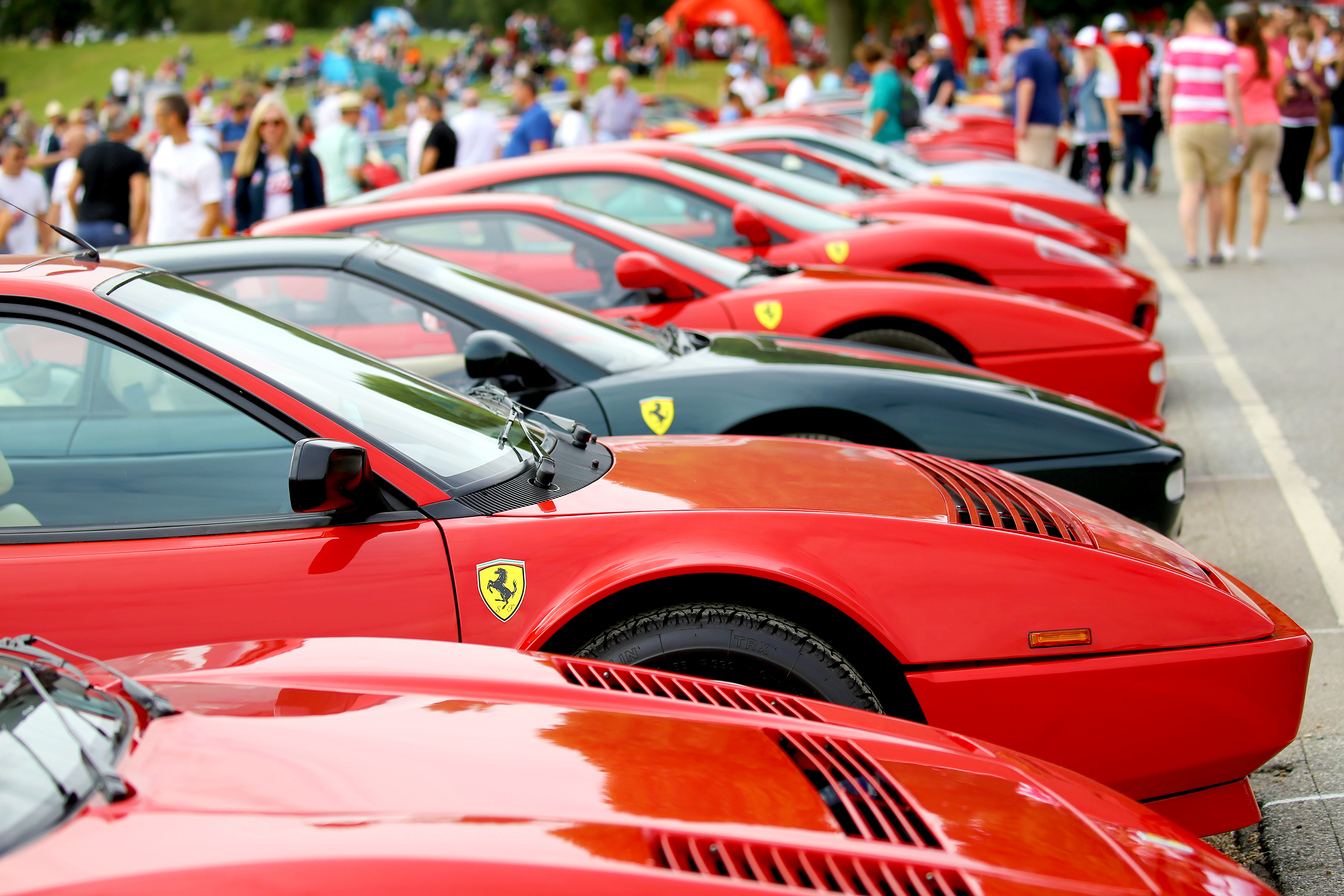 Msv Tickets Family Fun Day Oulton Park